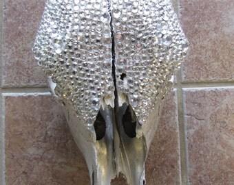 Blinged Steer Skull