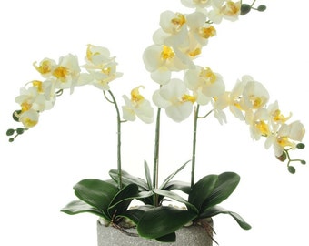 potted triple moth orchid artificial flower arrangement artificial orchid arrangement home accesories office flowers: day orchid decor