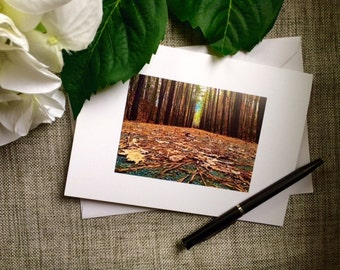 Photo Notecards, Blank Notecards