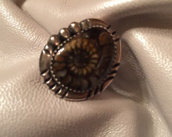 Ammonite and Sterling Silver Ring