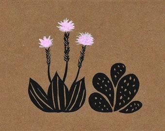 CA Cactus