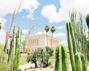 Mesa Arizona Temple Cactus