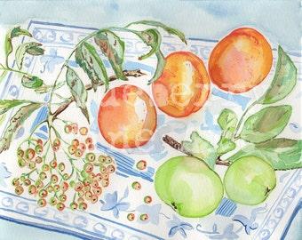 Apple watercolor, apricot print, rowan still life, food art, kitchen decor, fruit print, botanical art, green apple painting, fruit painting
