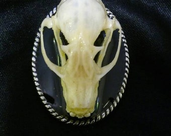 Fruit Bat Skull Necklace