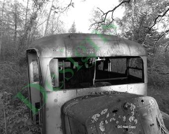 School Bus in the Woods