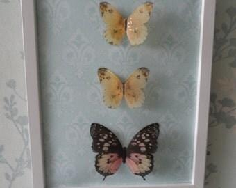 Butterfly Picture 3D Butterflies Wall Art Shabby Chic