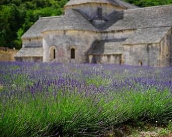 Lavender Field Cross Stitch Kit
