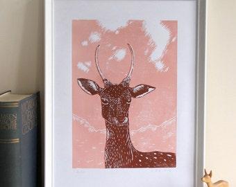 Linocut Young deer, original, limited edition, handmade printmaking, animal illustration, linoprint animal, brown, nature, wall decor, art