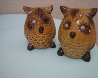 Vintage Owl Salt and Pepper Shakers with Googly Eyes