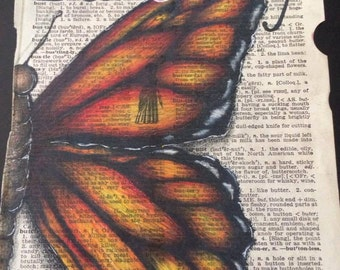 Butterfly Dictionary Page