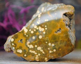 Orbicular Ocean Jasper Crystal Specimen - 1137.10