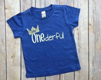 boys first birthday shirt, mr. Onederful, boys tshirt, birthday tee, toddler birthday, birthday gift for boys