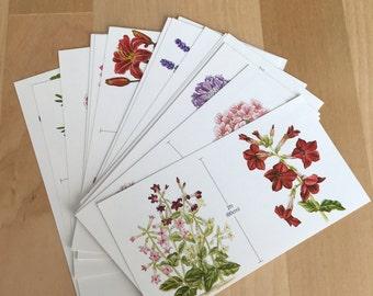 Vintage flower ephemera-20 mini sheets