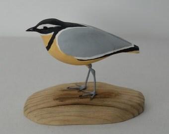Egyptian plover / Pluvianus aegyptius - carving birds - handmade sculpture - wood carving bird - shorebirds sculpture