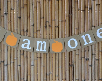 I am One Pumpkin birthday banner, Birthday Banner, Photo Prop, Baby Birthday, Pumpkin Birthday