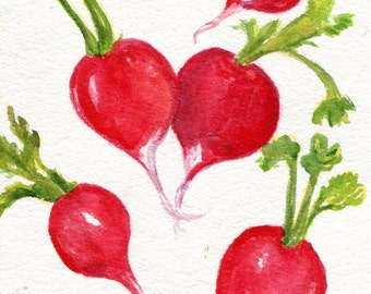 Red Radishes Watercolor Painting Original, Small Vegetable Painting, Kitchen Wall Decor Art 5 x 7 radishes watercolors  original decor