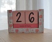 Baby Countdown Wooden Block Calendar - Tiny Pink Elephants - For Girls