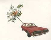 Harold and Maude abscond with an ailing kumquat tree.   Limited edition print of an original collage by Vivienne Strauss.