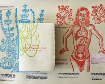 Lavender and Evil Things: Letterpress Informational pamphlet