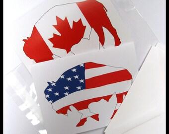 Buffalo Cards - USA Flag Buffalo - Canada Buffalo Card  -  Blank Bison Note Cards - SET of 2 - Buffalo NY