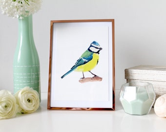The Blue Tit postcard, watercolor illustration