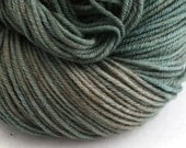 Windham 100% US Merino Hand Painted worsted weight 220 yds 201m ~4oz 113g Army Jacket