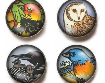 BIRD MAGNETS set of 4 super strong glass magnets