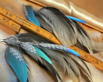 Beautiful macaw feather earrings, long chain natural color blue with grey and white feathers, cruelty free feathers