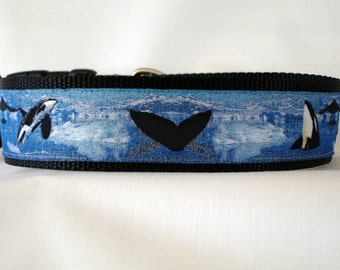 Orca Dog Collar - 1.5 inches wide