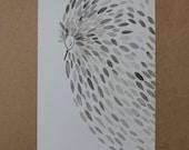 WINTER SALE Feathers Postcard Notecard Notelet Bird Thank you Blank Card
