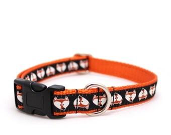 "3/4""  Fox Face martingale or buckle dog collar"