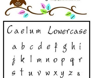 CAELUM - LOWERcase Font - 3mm Lowercase steel letter stamps made for stainless steel - includes How to Stamp Metal tutorial