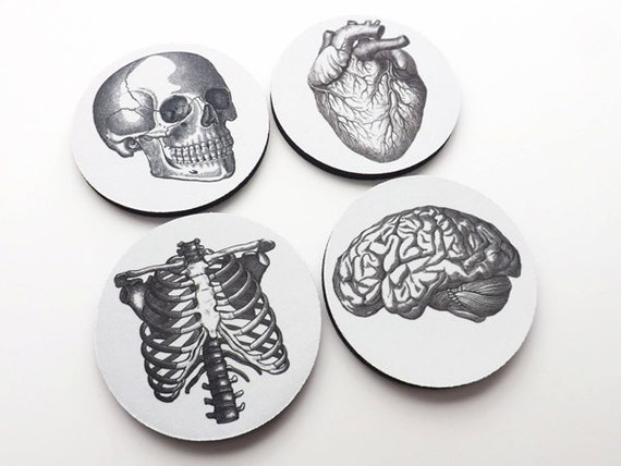 Doctor Nurse gift drink Coasters anatomy father's day gothic home decor doctor anatomical heart physician assistant pa rn np md pt geek goth