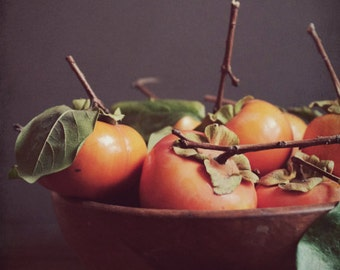 Persimmon Still Life Dark Brown Orange Fruit Photography Print Food Kitchen Art Dining Room Decor 'Persimmon Bowl'