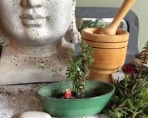 Green goddess, flower frog, metal flower frog dish, vintage garden, shabby garden, nature curio, photo frame, herb dryer,