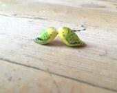 Tiny green budgie earrings
