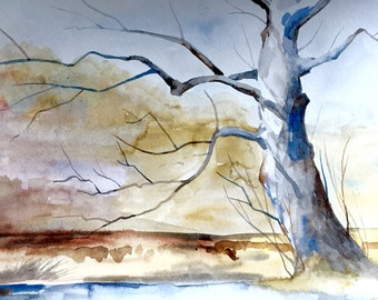 "Sycamore Tree in Watercolor, Original Painting, Landscape Watercolor, 9""x12"""