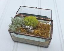 Glass Treasure Box - Rectangle Ring Box