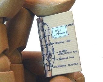 Dry Bones Miniature Book