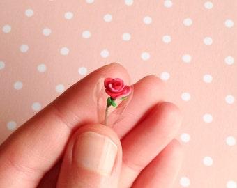 Je t'aime Miniature Rose