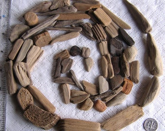 62 Tiny to Medium Driftwood Sea Wood Art Mosaic and Craft Supplies (1820)