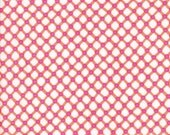 25% off Michael Miller Cora Sorbet  - Fabric 1 yard off of bolt (more available)