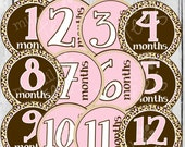 MONTHLY IRON ONS Decals or Monthly Stickers - 12 Monthly iron on heat transfers - for Baby girl - Pink Leopard  - Pink & Brown (Style#A08)