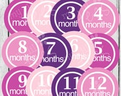 MONTHLY IRON ONS Decals or Monthly Stickers - 12 Monthly iron on heat transfers  Baby girl - Precious Pink & Purple Monthly Pack (Style#A12)