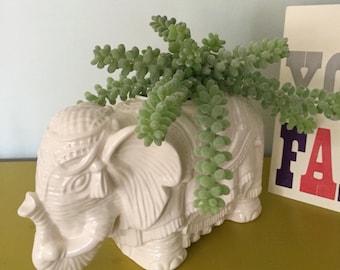 Elephant Planter Made to Order