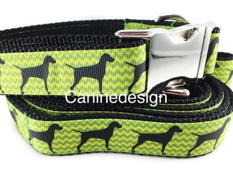 Dog Collar and Leash, Vizsla, 1 inch wide, 6ft lead, quick release, metal buckle, chain, martingale, hybrid, nylon