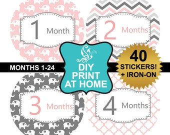 DIY 40 printable baby girl month milestone stickers Pink gray elephant Instant download Iron on Digital File (No.186)