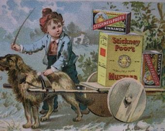 Stickney & Poor's Mustard-Victorian Trade Card-Cute Boy-Dog Pulling Cart-Boston,MA