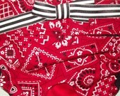 Dog Diapers Britches or Panties Red and White Cowboy Bandana Print