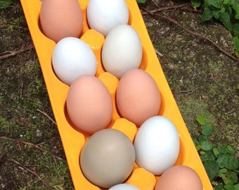 egg crate, egg holder, egg carton, Ceramic,  bright, opaque, tangerine yellow, urban farmer, back yard chickens, bake, cook